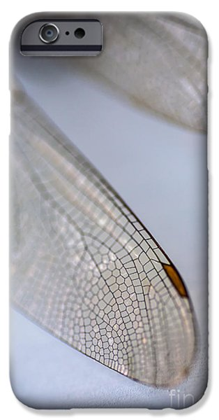 Dragonfly iPhone Cases - Dragonfly Wings 2 iPhone Case by Jan Bickerton