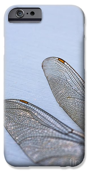 Dragonfly iPhone Cases - Dragonfly Wings 3 iPhone Case by Jan Bickerton