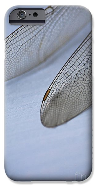 Dragonfly iPhone Cases - Dragonfly Wings iPhone Case by Jan Bickerton