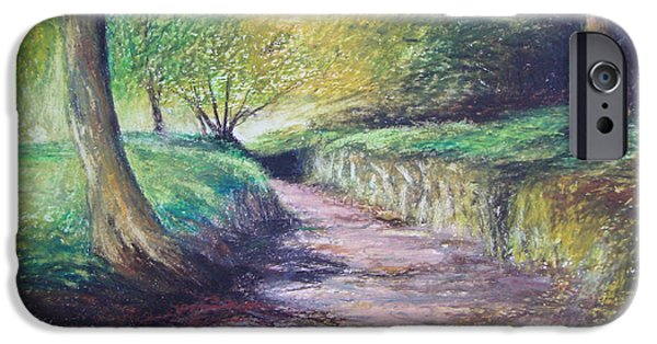 Pathway Pastels iPhone Cases - Drakes Leat Dartmoor iPhone Case by Sue Wills