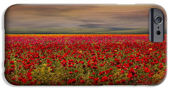 Drama iPhone Cases - Drama over the Flower Fields iPhone Case by Angela A Stanton