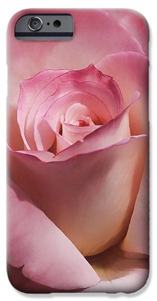 Floral Photographs iPhone Cases - Dramatic Mauve Cream Rose Flower iPhone Case by Jennie Marie Schell