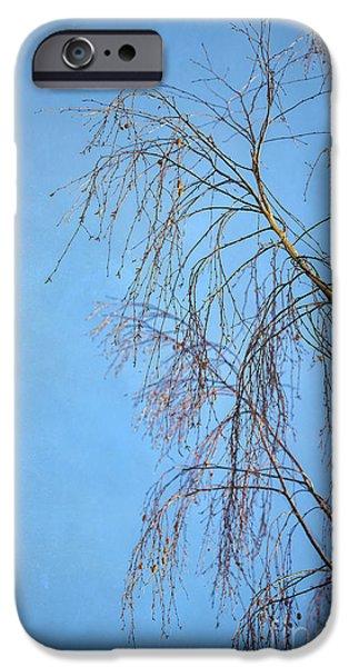 Dream Blue iPhone Case by Evelina Kremsdorf