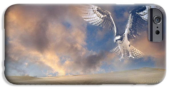 Sand Dunes Mixed Media iPhone Cases - Dream Hawk iPhone Case by Georgiana Romanovna