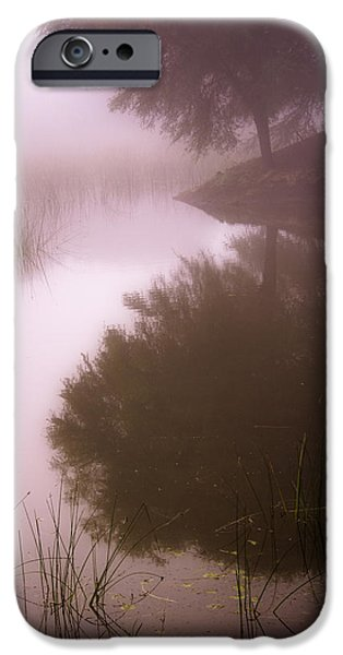Lakescape iPhone Cases - Dream iPhone Case by Hitendra SINKAR