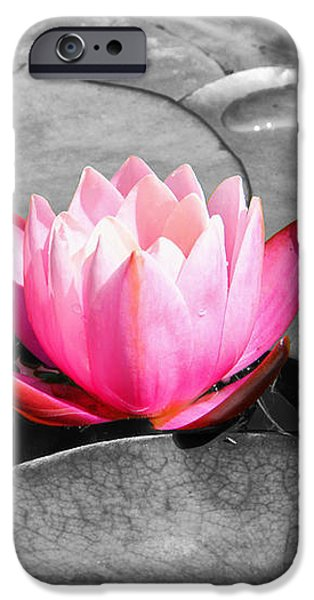 Dream Lily iPhone Case by Mariola Bitner