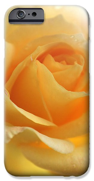 Summer iPhone Cases - Dreamer iPhone Case by  The Art Of Marilyn Ridoutt-Greene