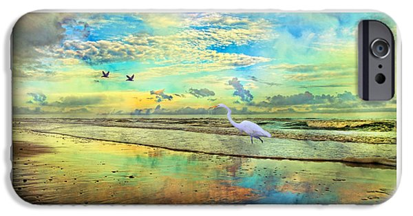 Matting iPhone Cases - Dreaming Along the Coast -- Egret  iPhone Case by Betsy A  Cutler