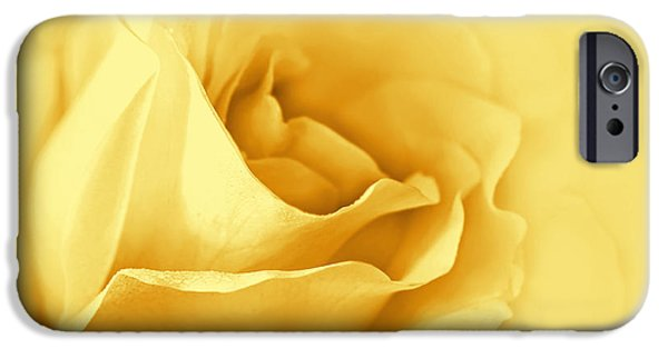 Gold Rose iPhone Cases - Dreaming of Yellow Golden Roses iPhone Case by Jennie Marie Schell