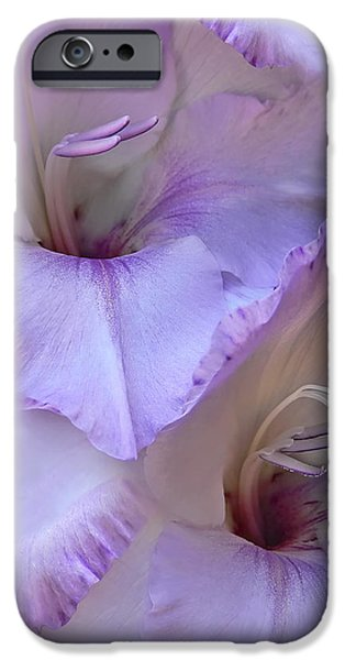 Gladiolas iPhone Cases - Dreams of Purple Gladiola Flowers iPhone Case by Jennie Marie Schell