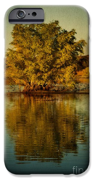 Willow Lake iPhone Cases - Dreams of Reflection iPhone Case by Medicine Tree Studios