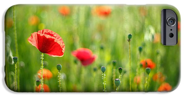July iPhone Cases - Dreamscape - Field of Poppies iPhone Case by Roeselien Raimond