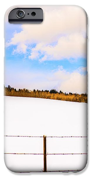 Dreamtime iPhone Case by Sandi Mikuse