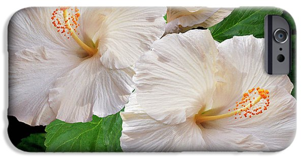 Best Sellers -  - Floral Digital Art Digital Art iPhone Cases - Dreamy Blooms - White Hibiscus iPhone Case by Ben and Raisa Gertsberg