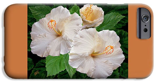 Brg iPhone Cases - Dreamy Blooms - White Hibiscus iPhone Case by Ben and Raisa Gertsberg