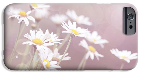 Innocence iPhone Cases - Dreamy Daisies iPhone Case by Linda Lees