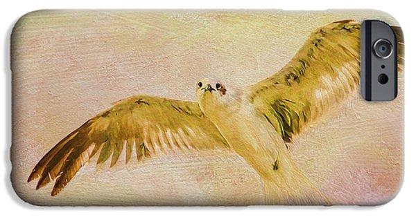 Flying Seagull iPhone Cases - Dreamy Flight iPhone Case by Deborah Benoit