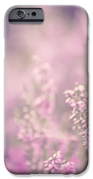 Dreamy Pink Heather iPhone Case by Natalie Kinnear