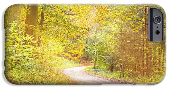 Fog Mist iPhone Cases - Dreamy Way Through An Autumn Forest iPhone Case by Armin Staudt