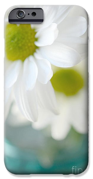 White Daisies iPhone Cases - Dreamy White Daisies Aqua Mint Ball Jar Photography - Ethereal Dreamy Shabby Chic White Daisies  iPhone Case by Kathy Fornal
