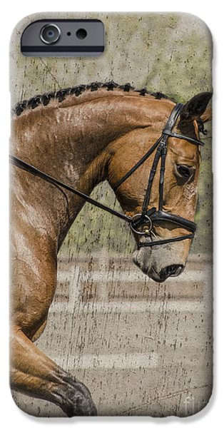 Horse Bit iPhone Cases - Dressage horse  iPhone Case by Linsey Williams