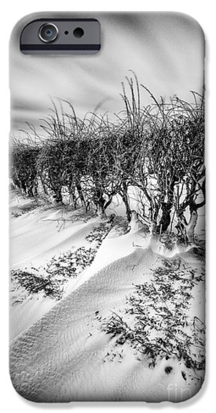 Drifting Snow Photographs iPhone Cases - Drifting iPhone Case by John Farnan