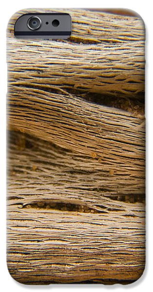 Driftwood 1 iPhone Case by Adam Romanowicz