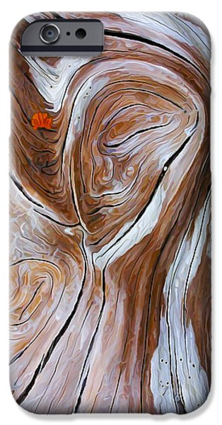 Modern Abstract iPhone Cases - Driftwood 6 iPhone Case by Bill Caldwell -        ABeautifulSky Photography