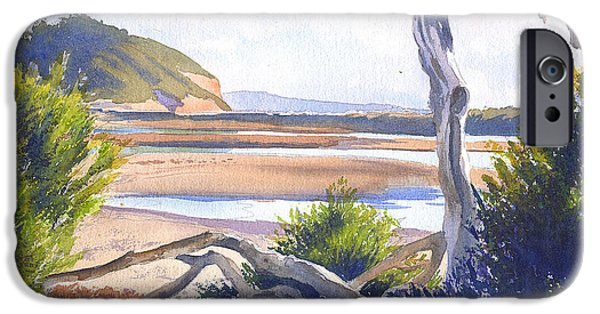 Driftwood iPhone Cases - Driftwood at Torrey Pines iPhone Case by Mary Helmreich