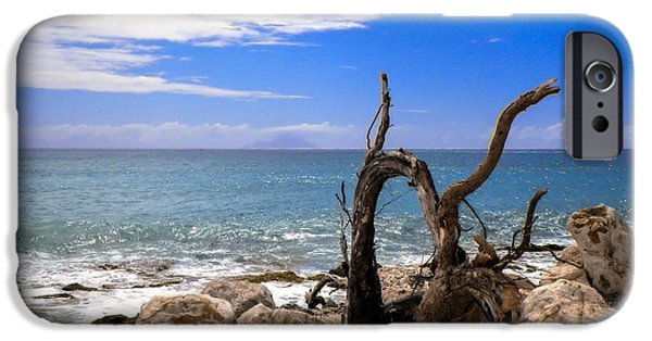 Driftwood iPhone Cases - Driftwood Island iPhone Case by Karen Wiles