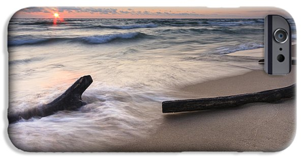 Driftwood iPhone Cases - Driftwood on the Beach iPhone Case by Adam Romanowicz