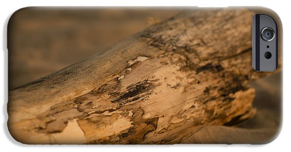 Fun Photographs iPhone Cases - Driftwood iPhone Case by Sebastian Musial