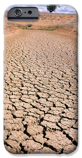Texture iPhone Cases - Drought, Australia iPhone Case by Panoramic Images