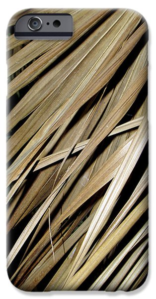 Close Up Glass iPhone Cases - Dry iPhone Case by Bob Slitzan