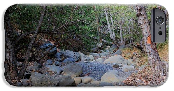 Oak Creek iPhone Cases - Dry Matilija Creek iPhone Case by Heidi Smith