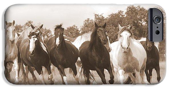 Duchess iPhone Cases - Duchess Sanctuary Big Herd iPhone Case by Duchess Sanctuary