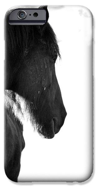 Duchess Sanctuary iPhone Cases - Duchess Sanctuary Daunceny iPhone Case by Duchess Sanctuary