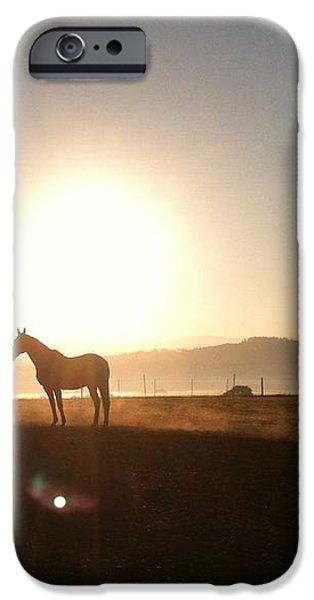 Duchess Sanctuary Sunrise iPhone Case by Duchess Sanctuary