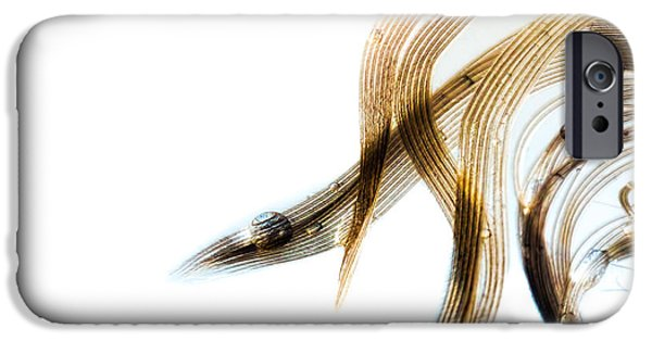 Sensitive iPhone Cases - Duck Feather and Water Drops iPhone Case by Bob Orsillo