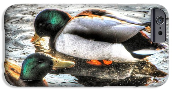 Fauna Pyrography iPhone Cases - Duck Lake iPhone Case by Yury Bashkin