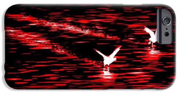 Wildlife Photographer iPhone Cases - Duck Race iPhone Case by Az Jackson