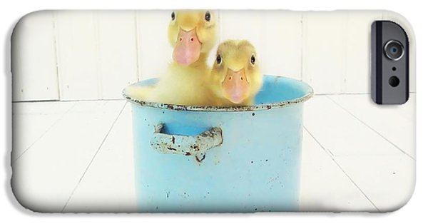 Child iPhone Cases - Duck Soup iPhone Case by Amy Tyler