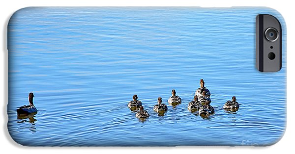 Duckling Photography iPhone Cases - Ducklings Day Out iPhone Case by Kaye Menner