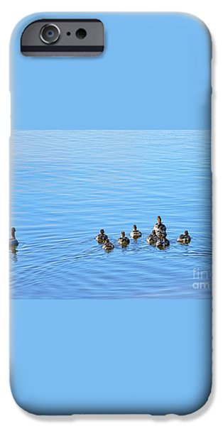 Ducklings Day Out iPhone Case by Kaye Menner