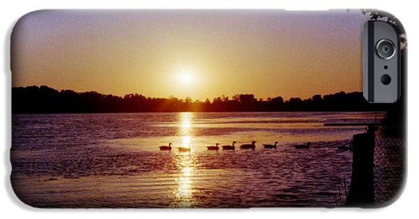 Forest iPhone Cases - Ducks At Sunset iPhone Case by T Campbell