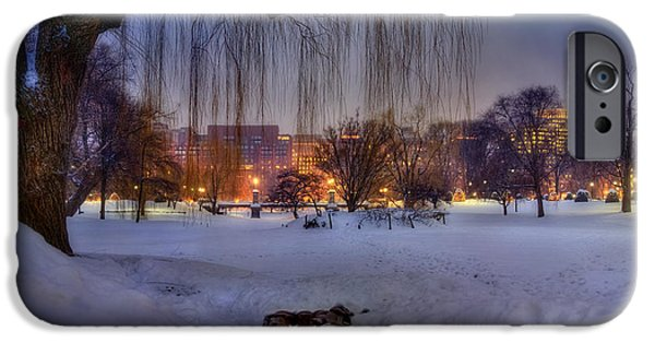 New England Snow Scene iPhone Cases - Ducks in Boston Public Garden in the Snow iPhone Case by Joann Vitali