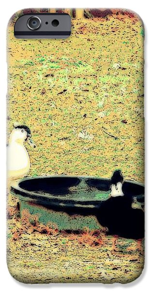 Ducky Afternoon iPhone Case by YoMamaBird Rhonda