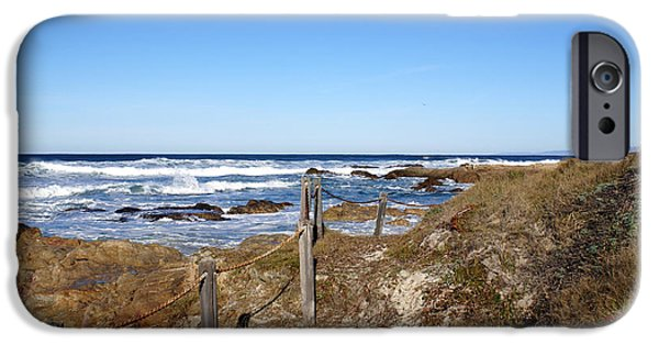 Cambria iPhone Cases - Dune Grass iPhone Case by Barbara Snyder