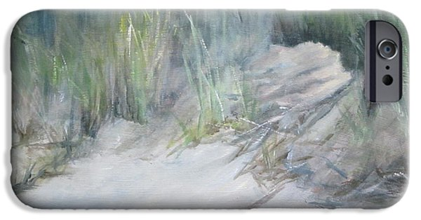 Rainy Day iPhone Cases - Dunes on the Delaware iPhone Case by Paula Pagliughi