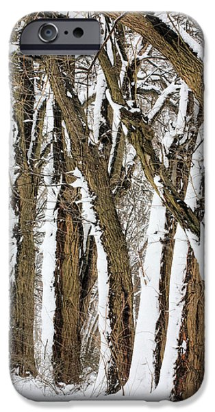 Winter Storm iPhone Cases - During the Storm iPhone Case by JC Findley